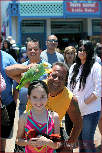 Olivia with the bird man on the Santa Monica Pier