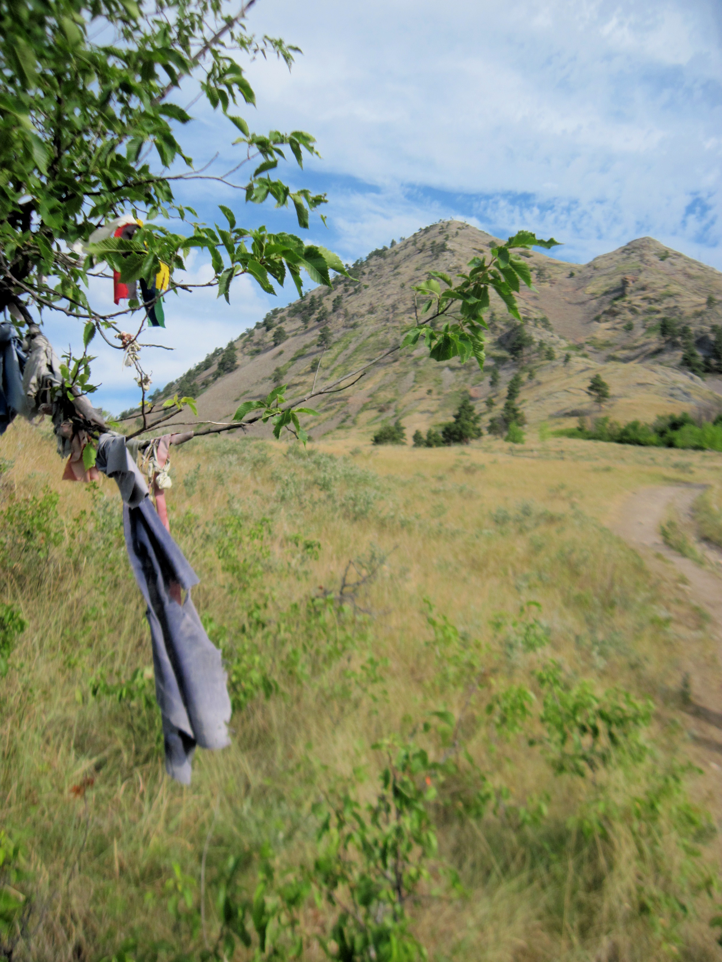 Native prayer flags- Black Hills 2
