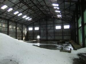 Antarctica Airline Hangar