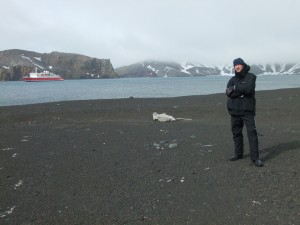 seal at deception island Antarctica