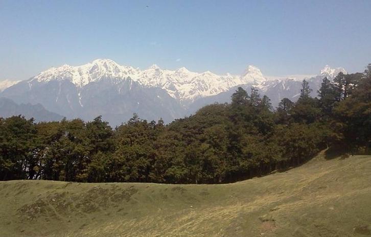 High altitude mountain meadows