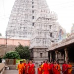 The Thiruvannamalai temple has several temple towers pointing in the four cardinal directions, each exquisitely carved.