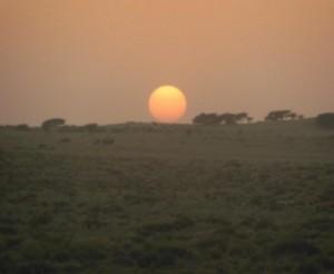 desert3 sun1