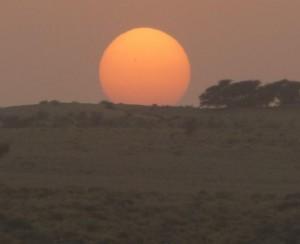 desert4 sun2