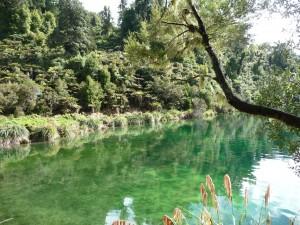 Beautiful Lake Waikaremoana