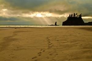 Second Beach-1