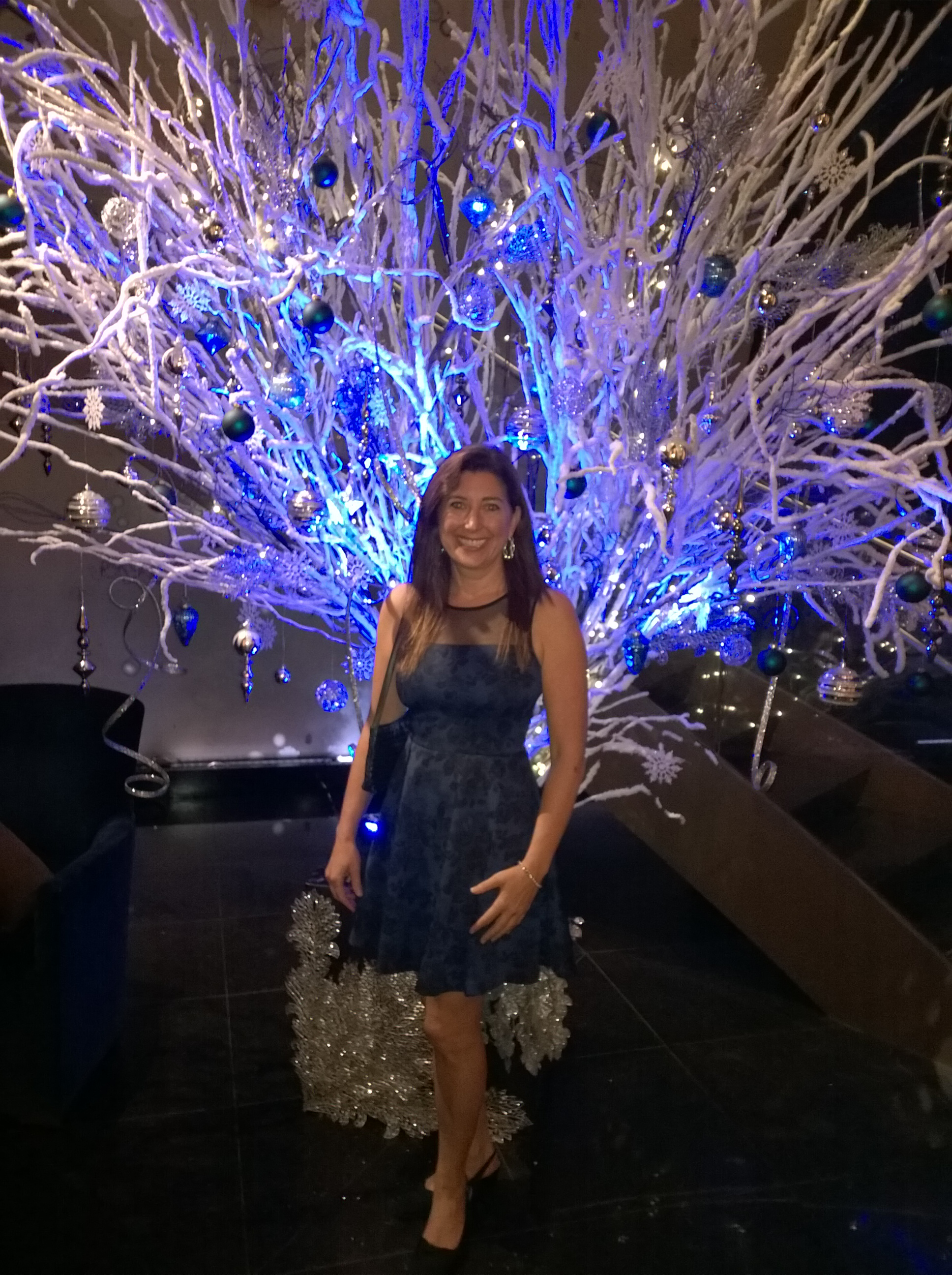 Lisa Niver at Sofitel Dec 2014