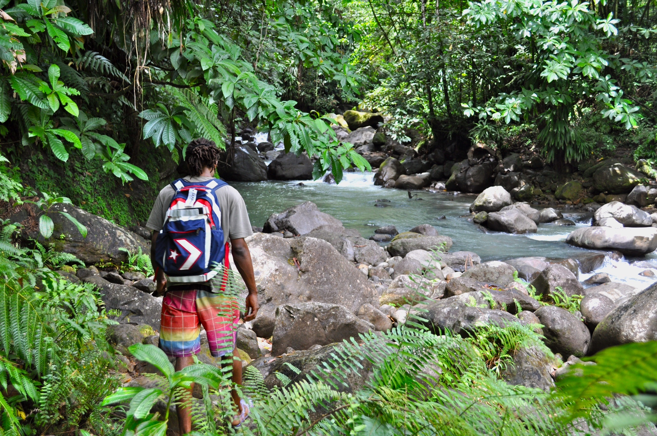 2015-02-09_54d8f159a6163_Dominica.jpg