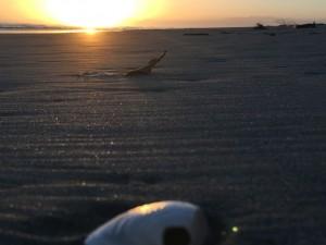 Sunrise at Bay Of Plenty, New Zealand. Photo by GayWhistler