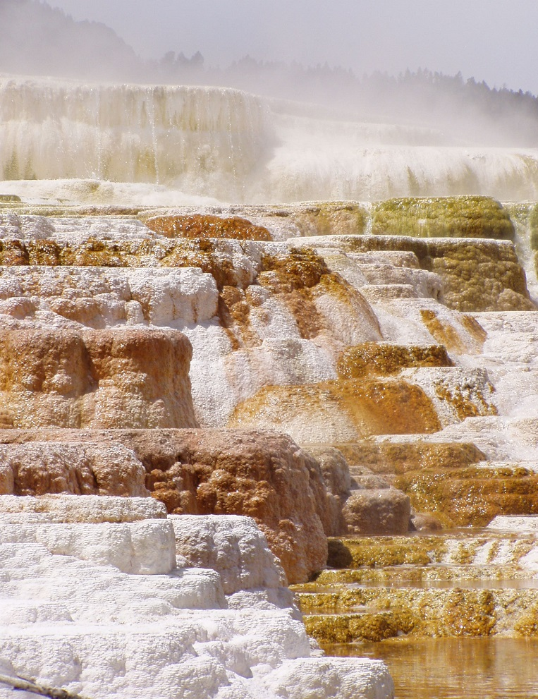 yellowstone national park  adventure awaits