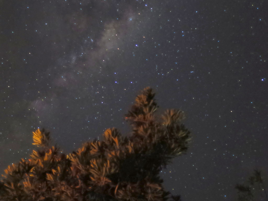2015-11-26_56569c4cce798_australia-night-sky-finola-wennekes.JPG