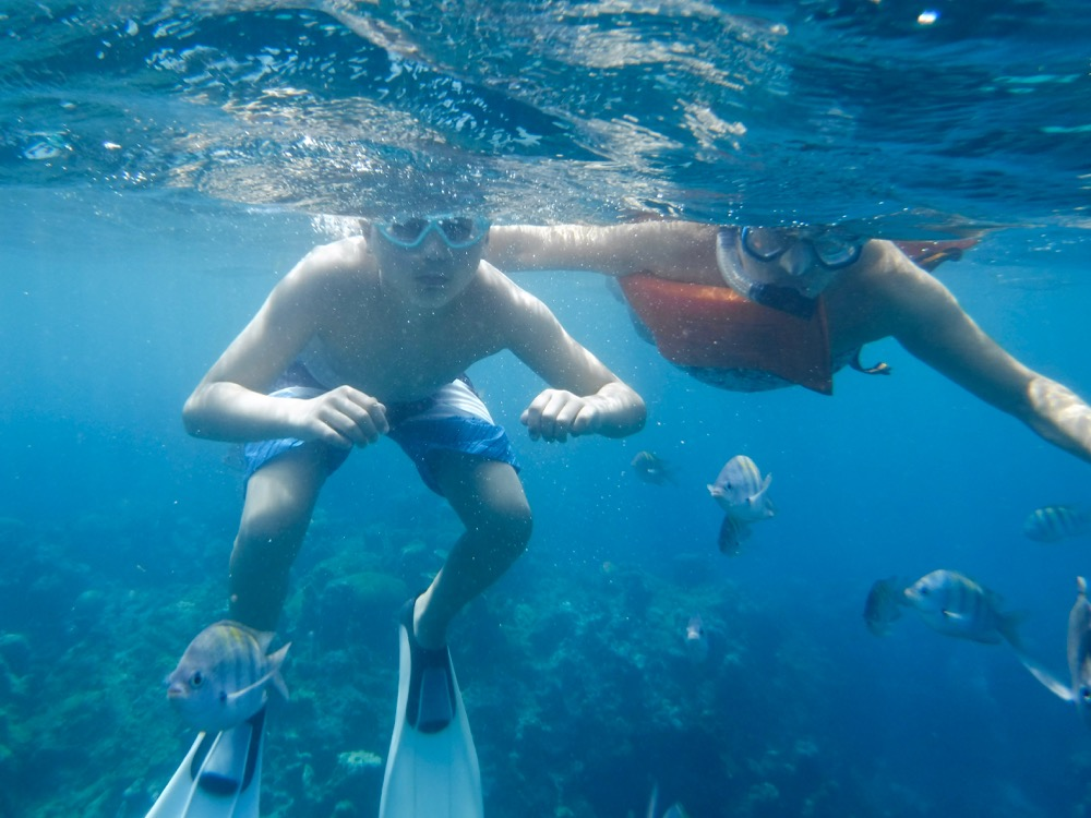 Snorkeling at Montego Bay Marine Park Jamaica