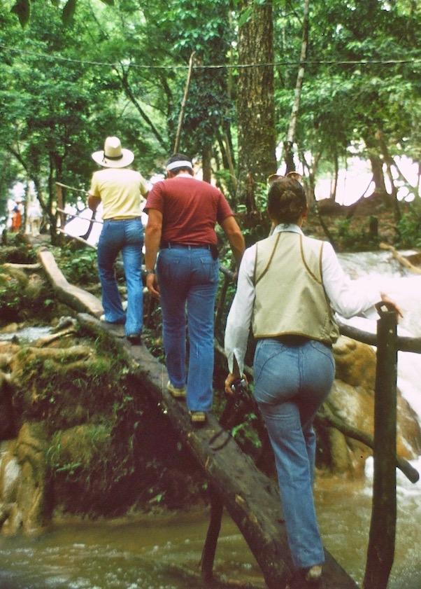 A primitive bridge.