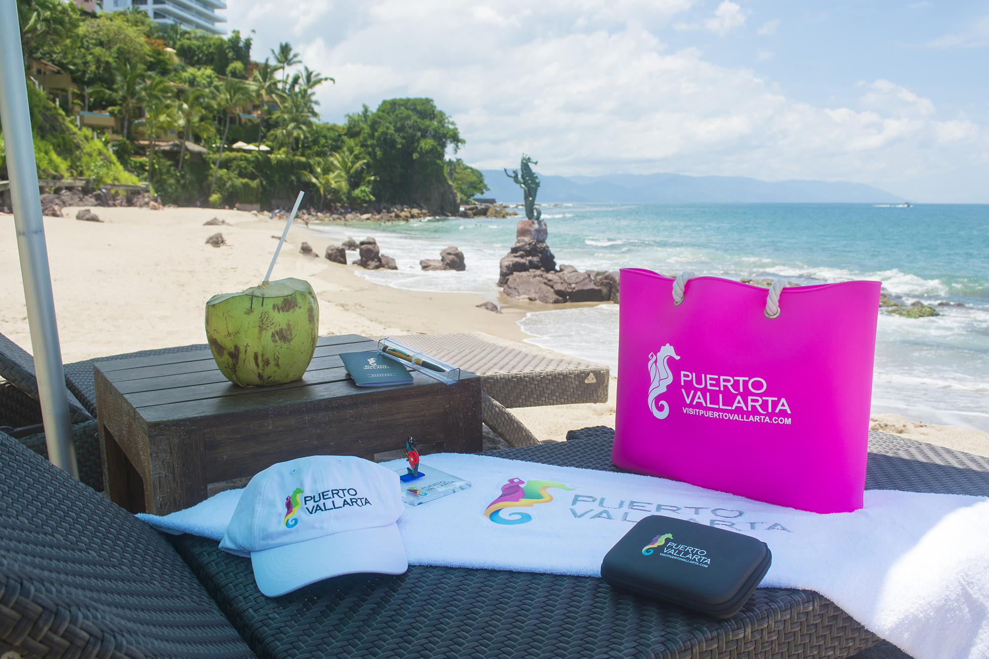 Win a trip to Puerto Vallarta! Join us for the Twitter Chat