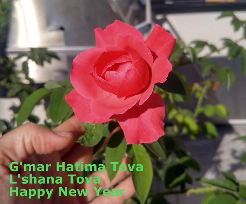 Happy New Year Gmar Hatima Tova Can you Enthusiastically Embrace the Present?