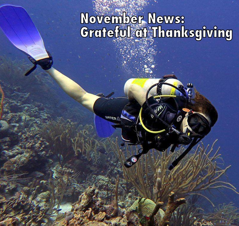 November News Grateful at Thanksgiving