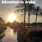 Discover an artsy athletic adventure in Aruba