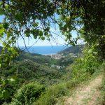 The scenery of Cinque Terre