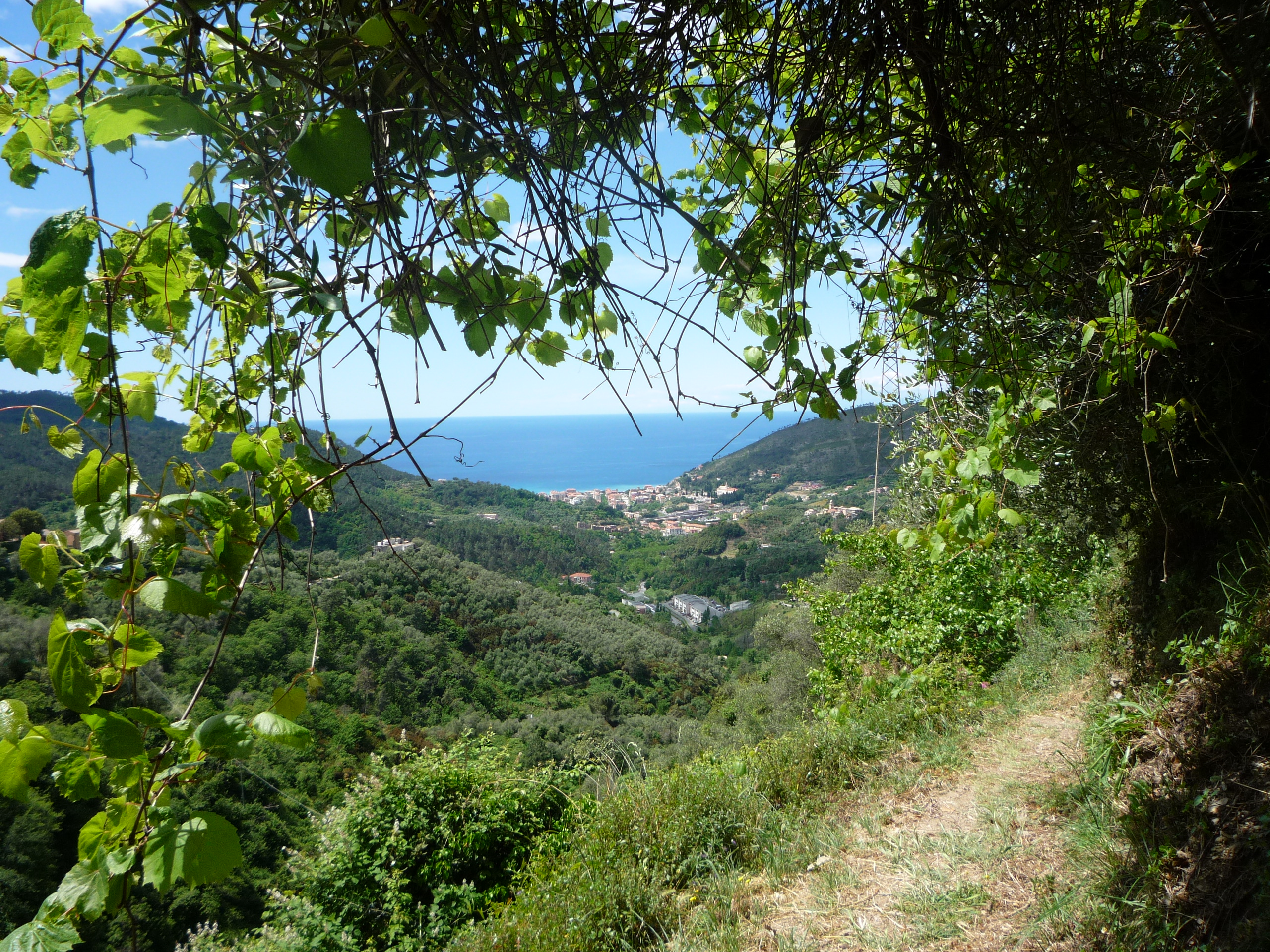 The scenery of Cinque Terre