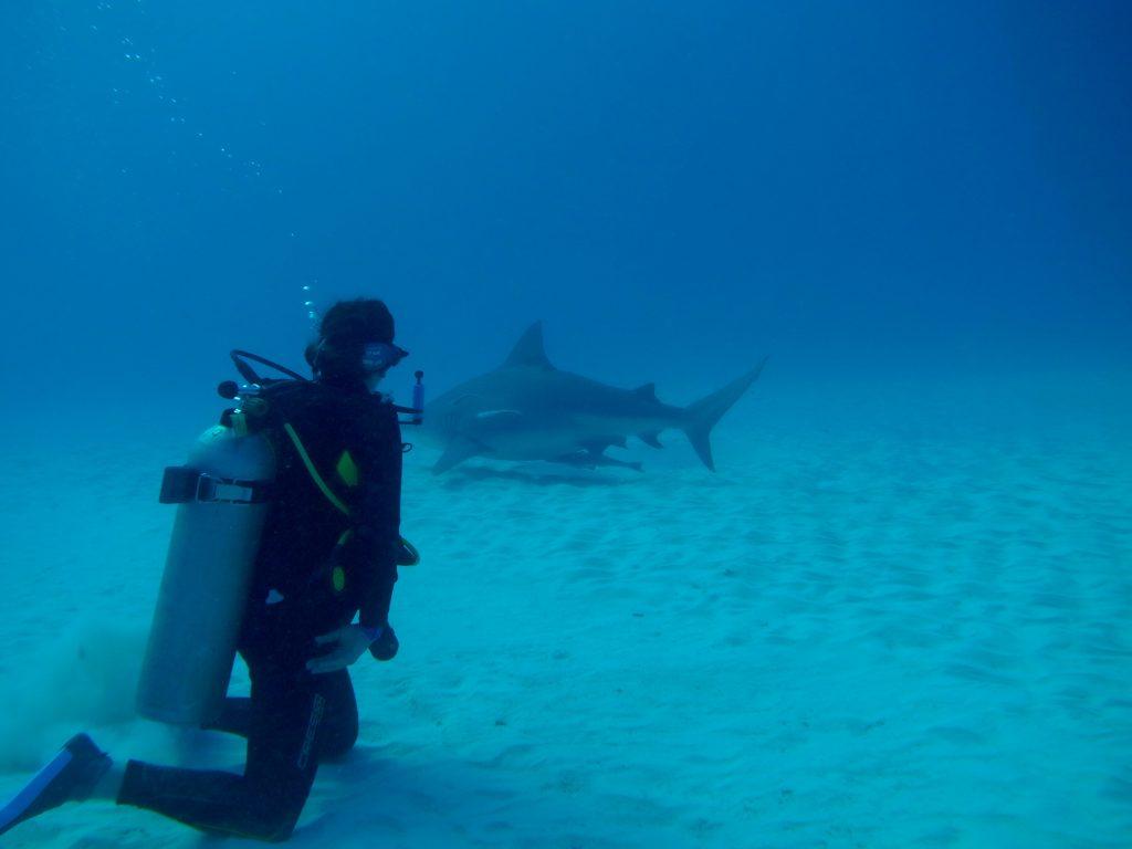 Lisa Niver Scuba Diving with Bull Sharks