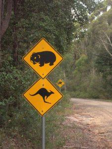 Australian road sign wombat, kangaroo