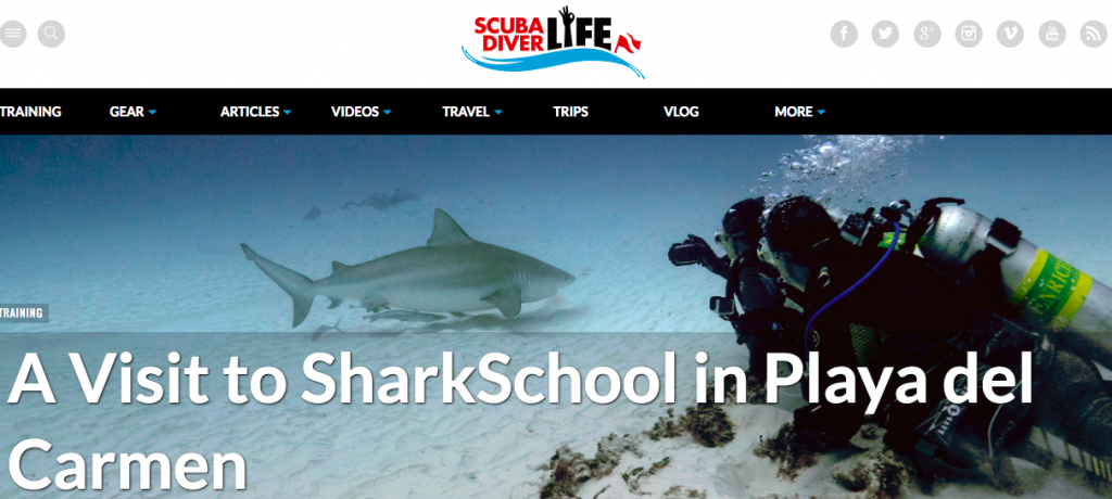 ScubaDiverLife SharkSchool