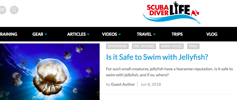 Lisa Niver swims with jellyfish for Scuba Diver Life