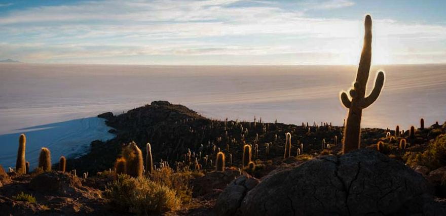 The Dead Island in the Dead Ocean Bolivia - We Said Go Travel
