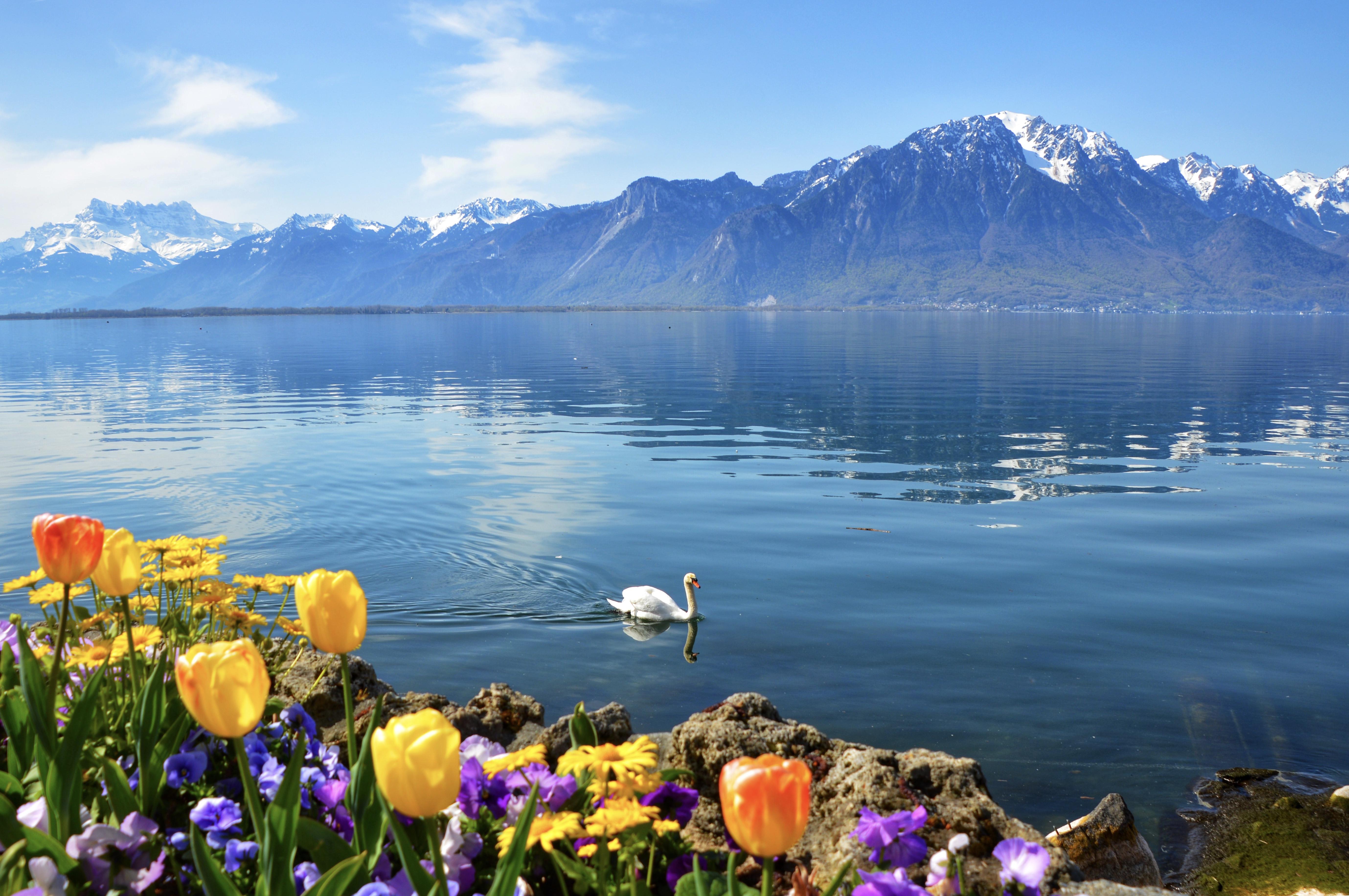 In All It's Serenity – Montreux – Switzerland