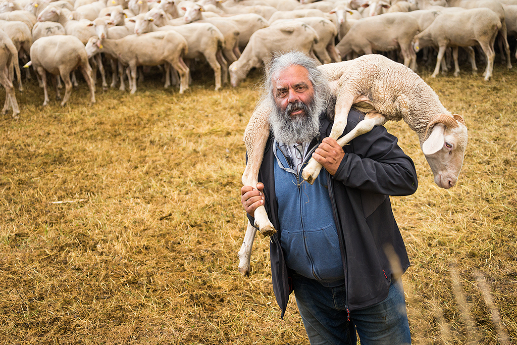Sheep farmer, Nunzio, in Italy