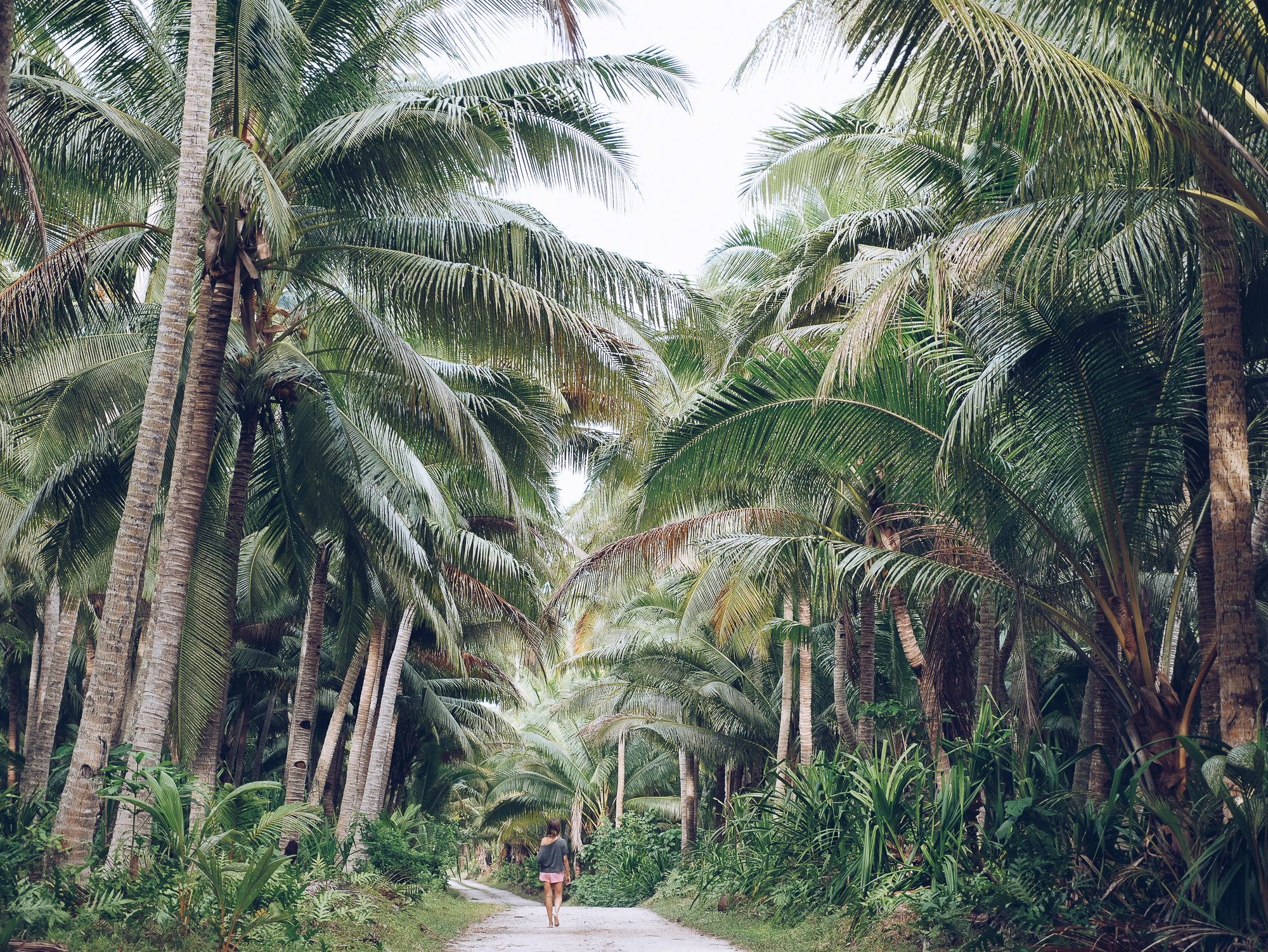 Palm Tree Heaven, Samoa