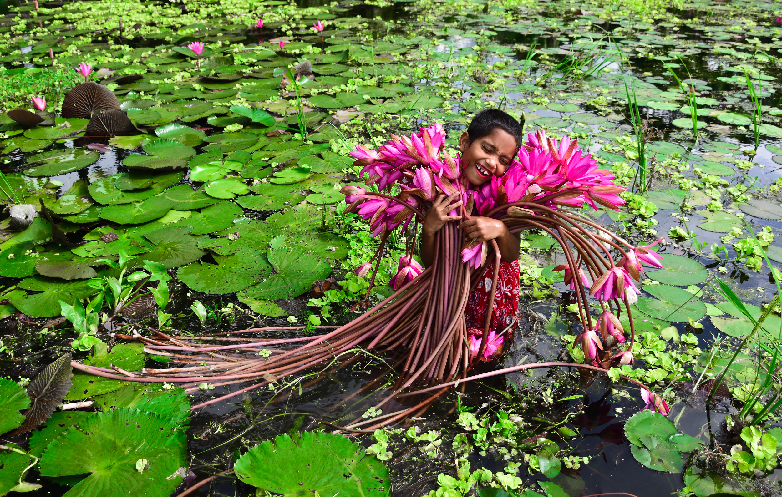 Girl With Water Lily in Bangladesh