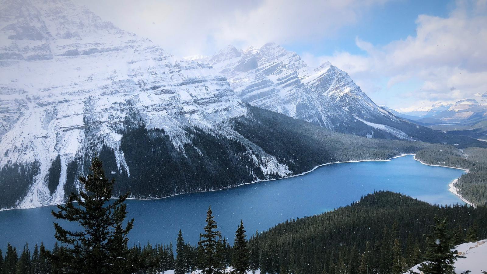 Winter magic at Peyto lake in Canada