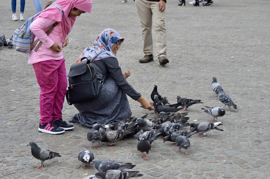 Bird Lady in Amsterdam, Netherlands