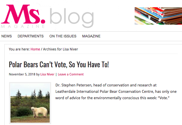 Ms Magazine Polar Bears Can't Vote So You Have to