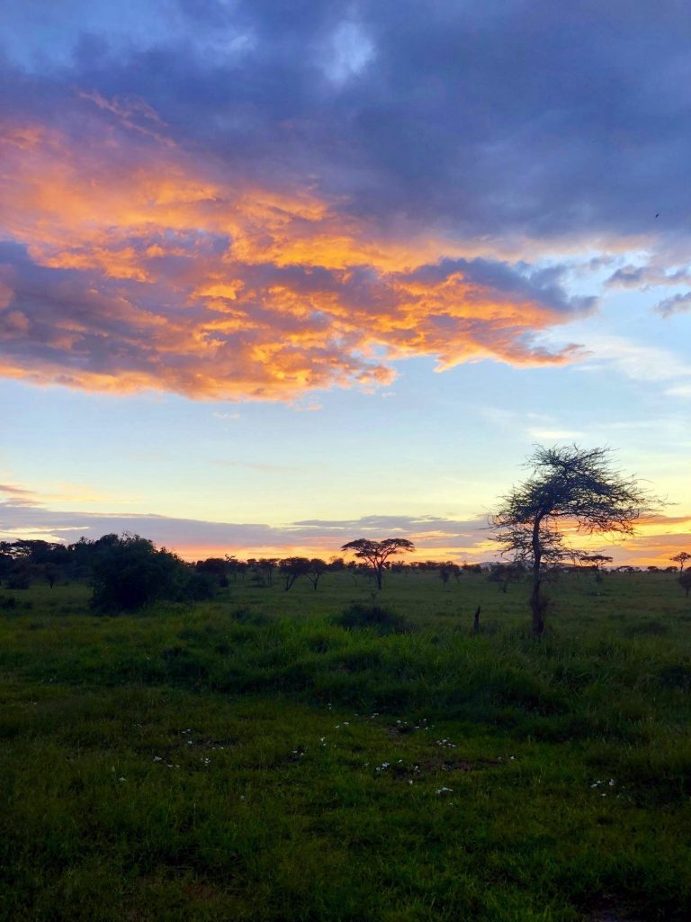 African Safari in Tanzania by Brec Bassinger with G Adventures