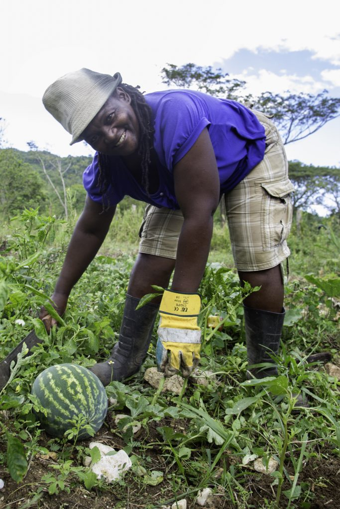 "Sandals Foundation Project: Grenrop ""Women in Agriculture"""