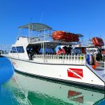 Beaches Turks and Caicos boat