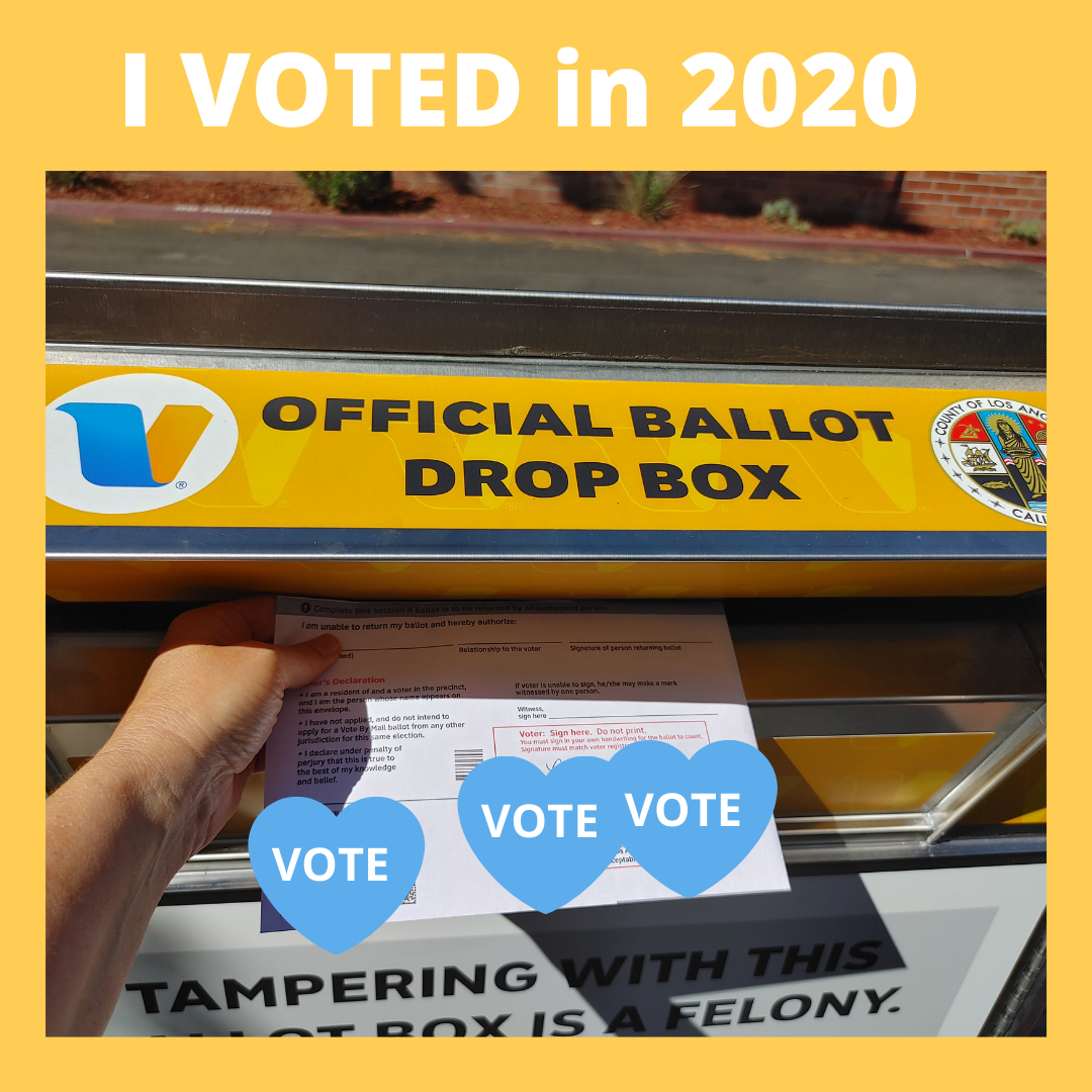 VOTE-2020- Lisa Niver voted