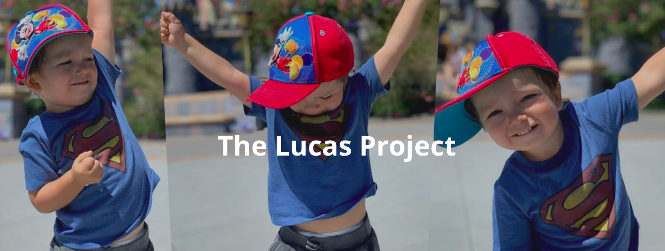 Lucas-Project-ALD